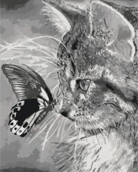 """Картины по номерам на холсте   """"Котенок и бабочка""""  КН2499"""