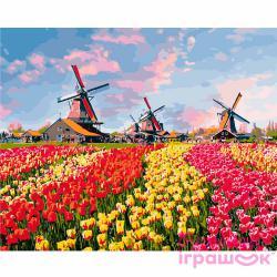 """Картины по номерам на холсте  """"Красочные тюльпаны Голландии""""  КН2224"""